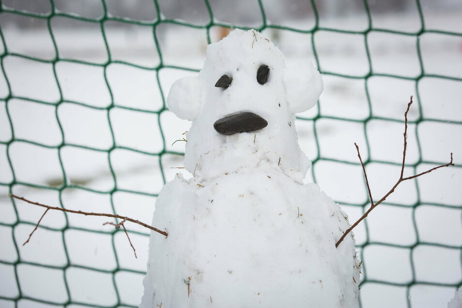 Seit dem Winter vor zwei Jahren war es kaum mehr möglich, einen Schneemann zu bauen. Jetzt steht dieses stolze Exemplar an den Elbwiesen.