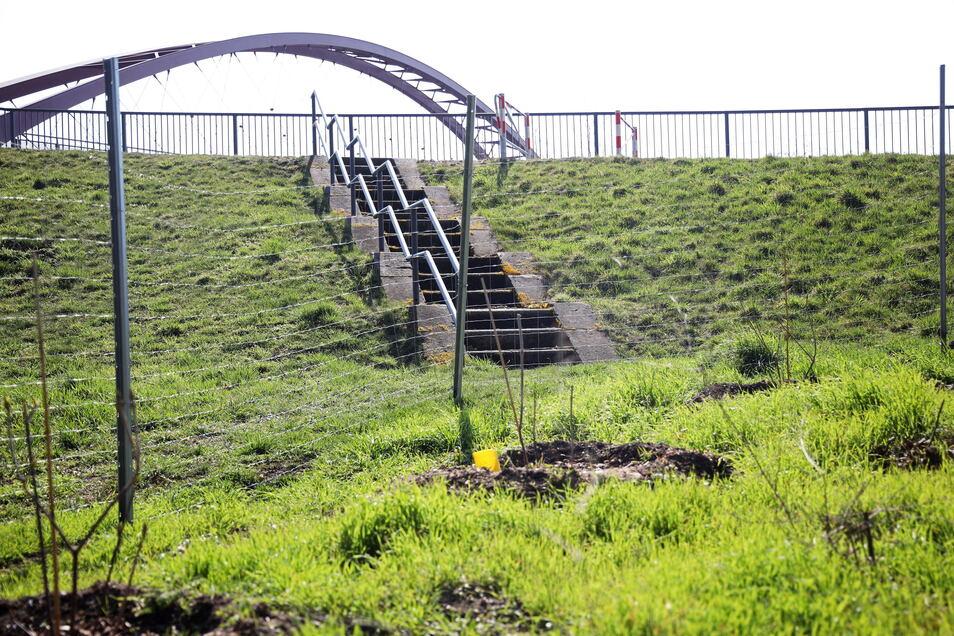Endet im Nichts: Die Treppe führt von der Gröbaer Schloßbrücke (im Hintergrund) hinab in den Park.