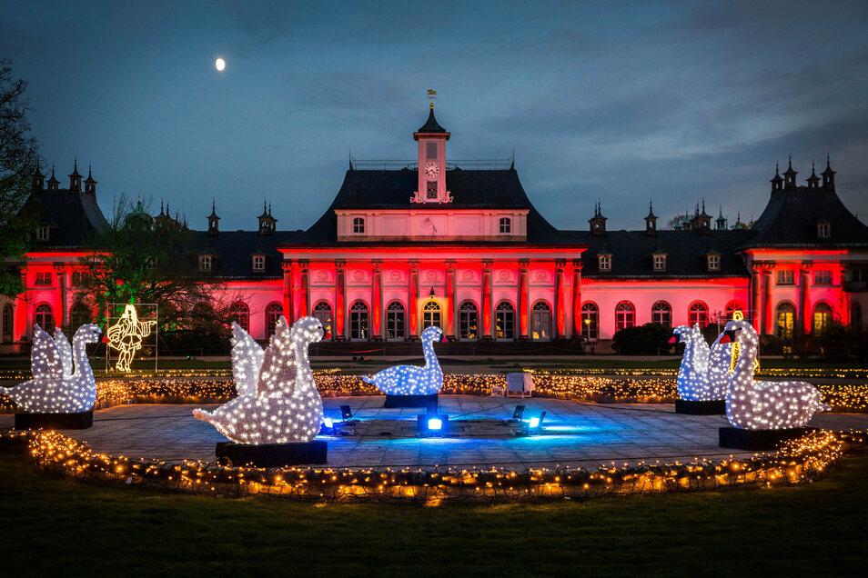 Diesen Blick sollen Besucher bald wieder genießen: Der Christmas Garden im Schloßpark Pillnitz
