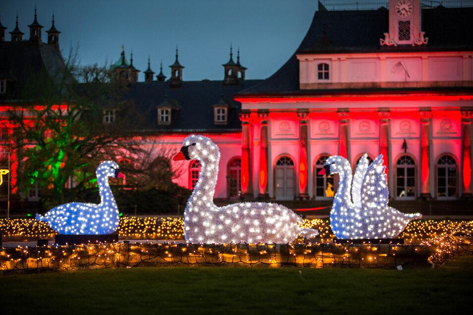 Im Lustgarten sind die historischen Gebäude beleuchtet, davor scheinen Schwäne im Brunnen zu schwimmen.