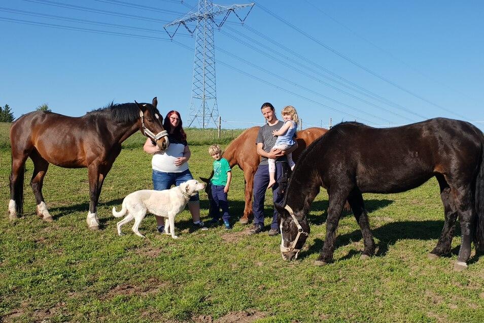 Katrin und Reiko Röthig mit ihren Kindern und einem der beiden Hütehunde auf ihrer Koppel gleich hinter ihrem Haus in Berthelsdorf. Die 29-Jährige hält hier das verletzte Pferd ihrer Freundin.
