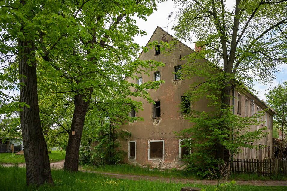 Nur der Baum, der zu nah am Haus steht, muss wohl weg. Der Rest des Grundstücks soll grün bleiben.