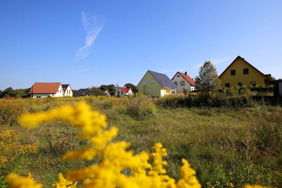 """Im Lomnitzer Wohngebiet """"Am Mühlberg"""" gibt es noch freie Baugrundstücke. Für die gibt es zwar Interessenten, doch die drohen nun abzuspringen, weil die Bauvorschriften der Gemeinde ihnen zu enge Grenzen setzen."""