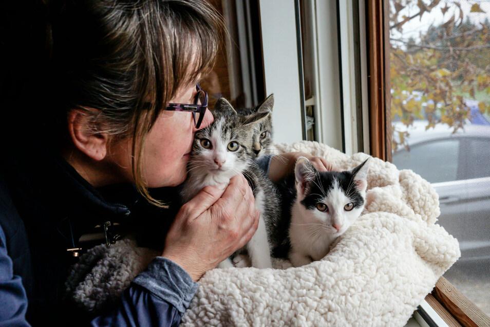 Das Herz von Irina Wenzel schlägt für herrenlose Katzen. Sie fängt die Streuner ein, lässt sie beim Tierarzt kastrieren, bezahlt die medizinische Versorgung von Spenden oder aus der eigenen Tasche.