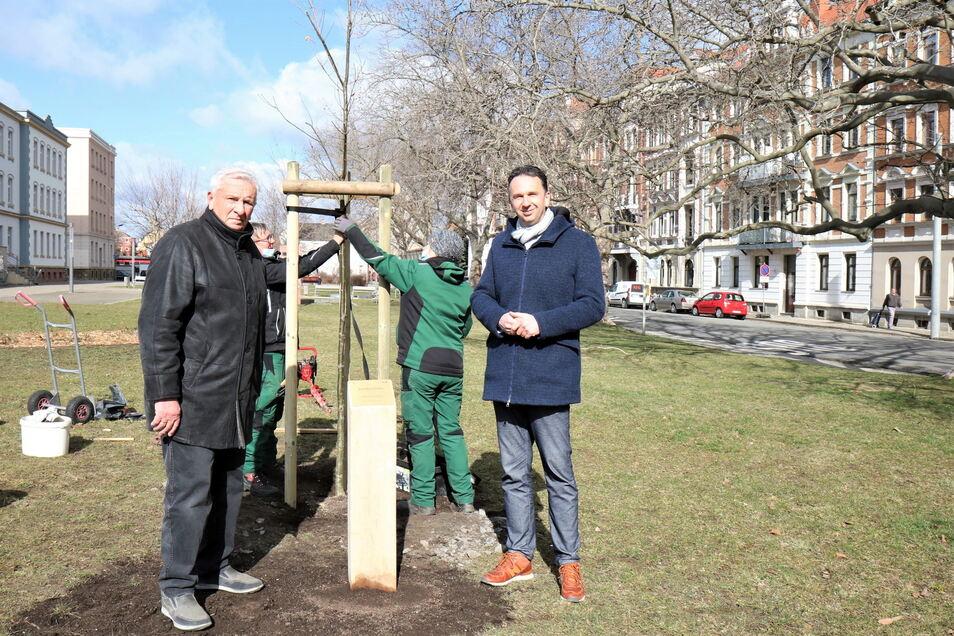Riesas Ehrenbürger Günter Colve (l.) hat am Poppitzer Platz jetzt einen Baum zu seinen Ehren bekommen. Ein Geschenk der Stadt zu seinem 90. Geburtstag vor wenigen Wochen. Auch OB Marco Müller (CDU, r.) hatte gratuliert.