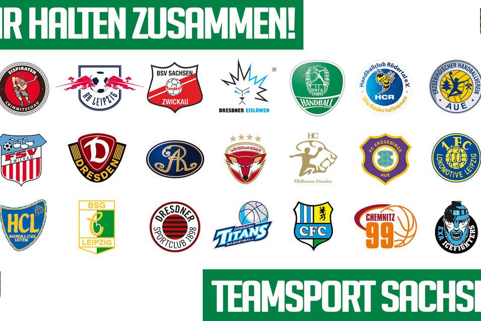 Die sächsischen Top-Klubs haben sich zur Initiative Teamsport Sachsen zusammengeschlossen.