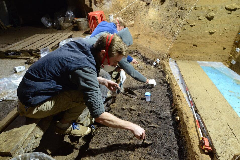 Bei den Ausgrabungen in der bulgarischen Bacho-Kiro-Höhle stießen Max-Planck-Forscher auf die Knochen und Werkzeuge sehr früher moderner Menschen in Europa.