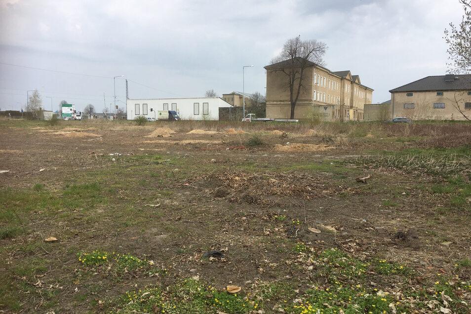 An der Elsterwerdaer Straße in Großenhain, hinter der Aral-Tankstelle, ist jetzt diese Freifläche entstanden.