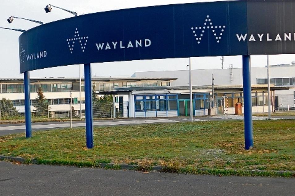 Der kanadische Cannabis-Konzern Wayland hat in Naunhof, Gemeinde Ebersbach, den alten Schlachthof als künftige Indoor-Produktionsstätte gekauft