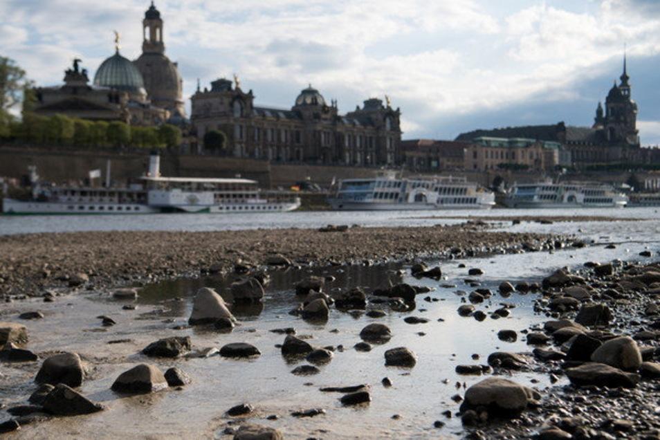 Kein seltenes Bild mehr in Dresden: Die Hitzesommer lassen immer wieder die Elbe schrumpfen und große Teile des Flussbetts austrocknen. Auch deshalb will die Stadt vor 2050 klimaneutral sein.