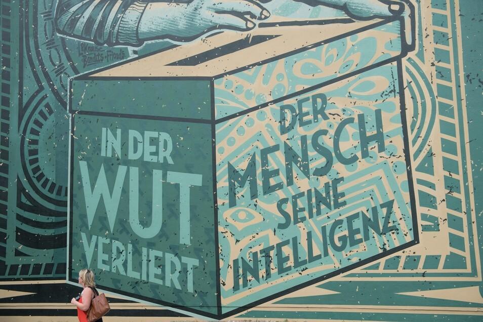 Seit einigen Tagen redet Dresden über dieses Graffiti in der Neustadt - und die Botschaft der Künstler an Protestwähler.