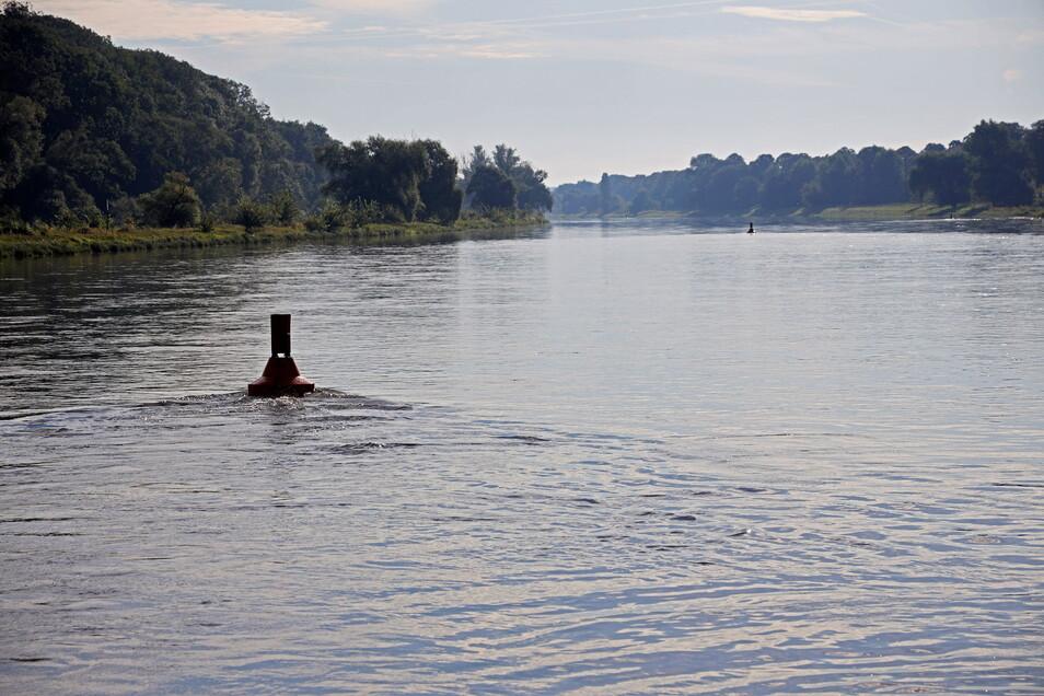 Ein Blick auf die Elbe bei Riesa. Einige Kilometer flussabwärts ist am Sonnabend eine Leiche im Fluss entdeckt worden.