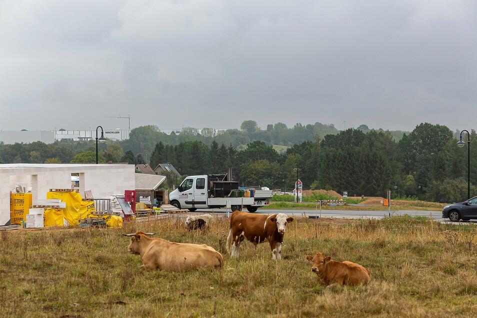 Das letzte große Wohngebiet ist in zwischen der Nossener Straße und dem Birkenhainer Weg in Wilsdruff entstanden.