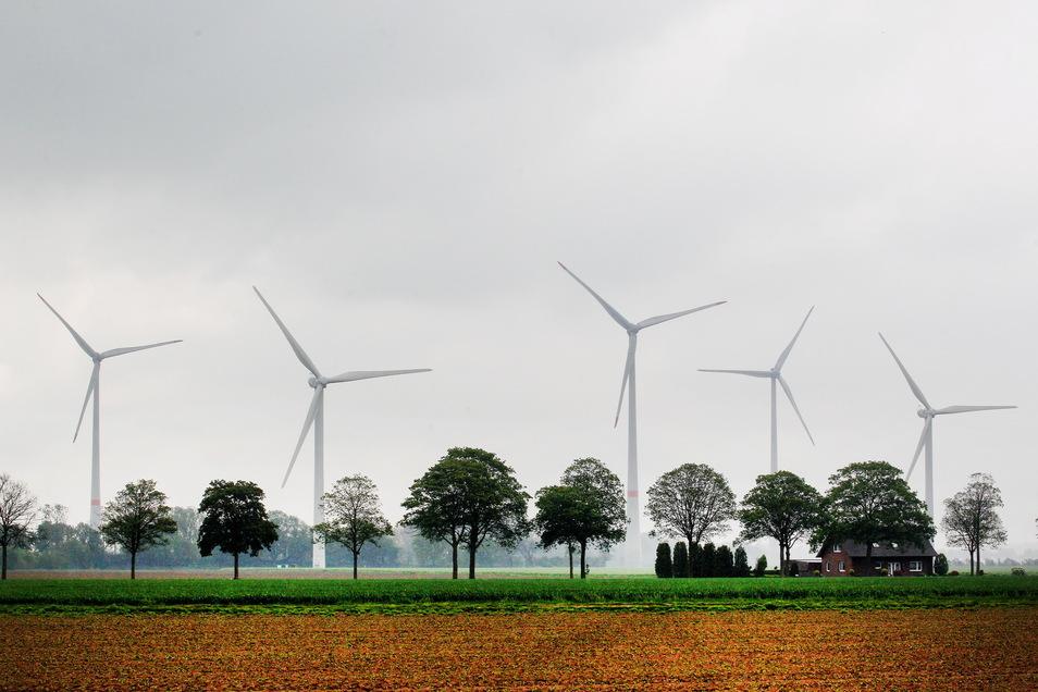 Erneuerbare Energiequellen haben nach Branchenangaben in den ersten sechs Monaten dieses Jahres 43 Prozent des Bruttostromverbrauchs in Deutschland gedeckt. Dabei sind die Standorte von Windkraftanlagen umstritten.