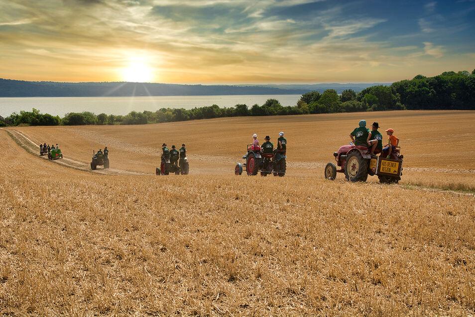 Der Weg ist das Ziel: Traktor-Romantik unweit des Malchiner Sees.