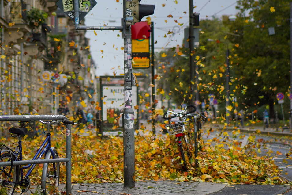 Der Sturm sorgte in Sachsen am Donnerstag für einiges Chaos. Noch immer sind einige Haushalte ohne Strom.