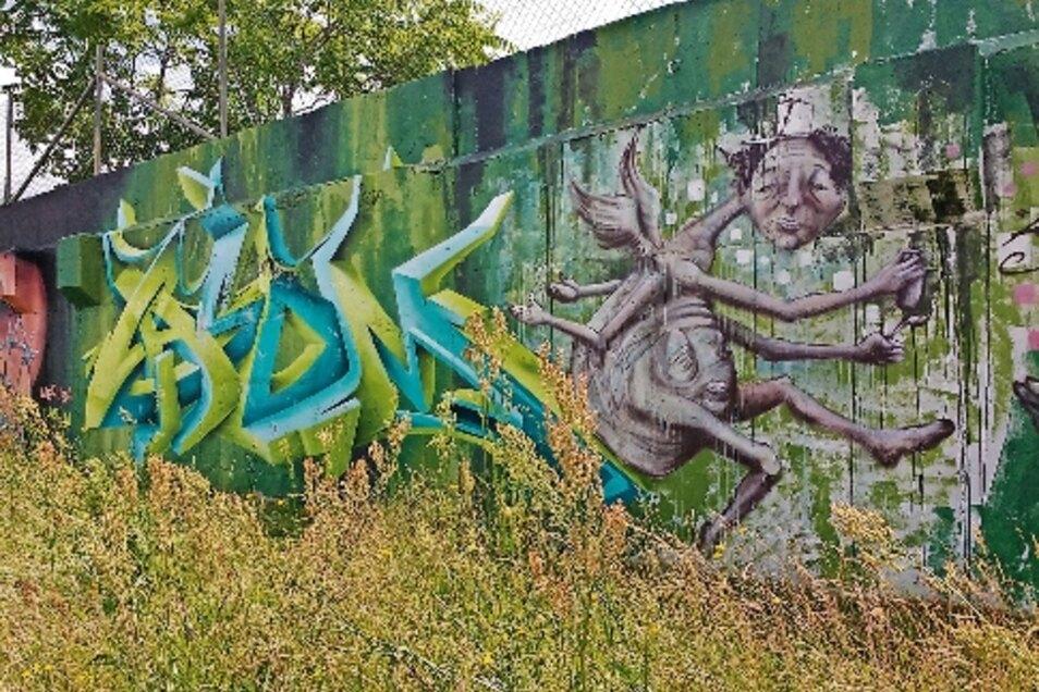 Ein Graffito von Carsten Langer ist in Riesa an der Heinrich-Schönberg-Straße nahe der Fitnessarena zu sehen.
