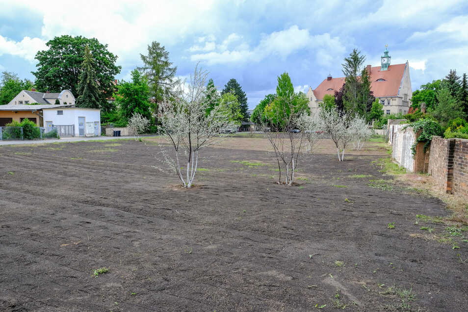Die Fläche am Moritz-Garte-Steg wird freigehalten. In der Zwischenzeit soll sie bepflanzt werden.