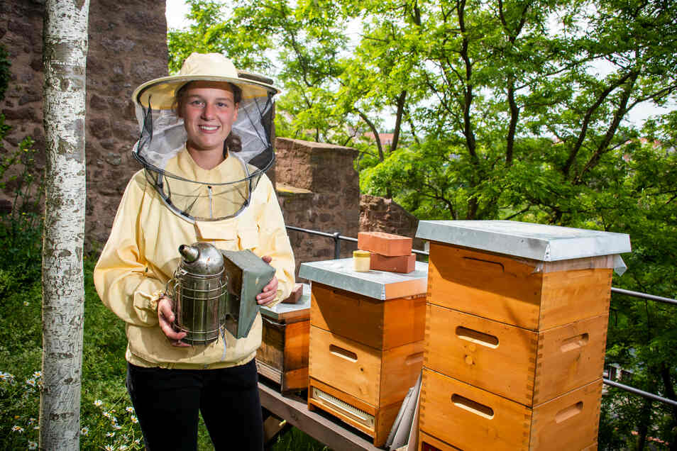 Durchaus gut geschützt arbeitet Paula Schiller an ihren Bienenstöcken auf der Burg Mildenstein.