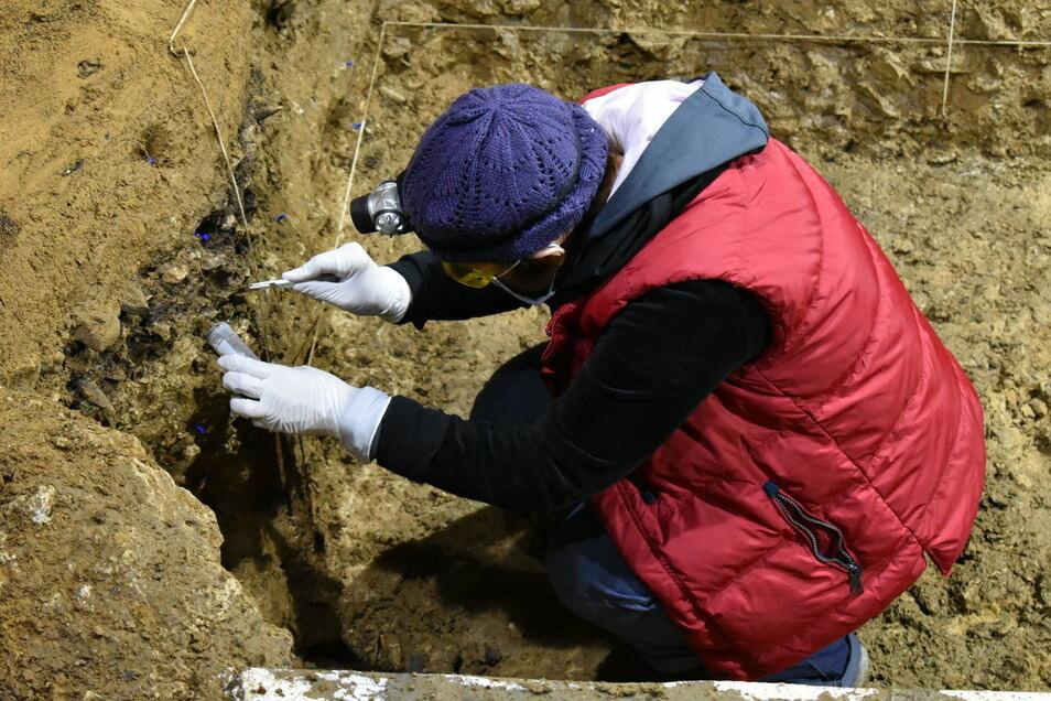 Eine der Grabungsleiterinnen, Tsenka Tsanova aus der Abteilung für Humanevolutionam Max-Planck-Institut für evolutionäre Anthropologie in Leipzig, entnimmt Sedimentproben für die DNA-Analyse.