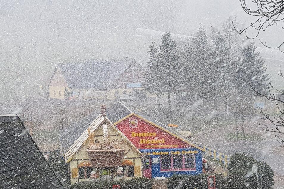 Am Mittwochnachmittag erlebte Altenberg noch einmal einen Schneesturm. Liegengeblieben sind die Flocken aber nicht.