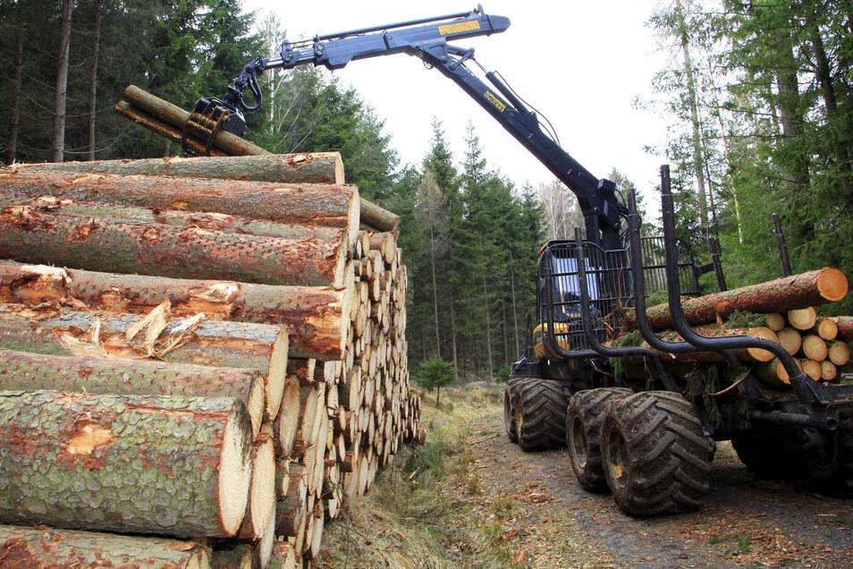 Der Holzverkauf ist die Haupteinnahmequelle des Forstbetriebs.