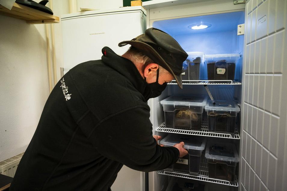Tierparkdirektor Sven Hammer und die Schildkröten im Kühlschrank: Für den Stromverbrauch kann eine Patenschaft übernommen werden.