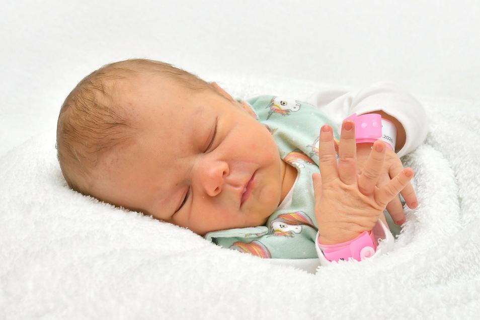 Hanna, geboren am 21. September, Geburtsort: Pirna, Gewicht: 2.930 Gramm, Größe: 49 Zentimeter, Eltern: Kathleen Müller und Sebastian Thieme, Wohnort: Heidenau