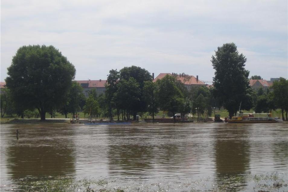 """Im """"Fährgarten"""" am Johannstädter Ufer beginnen die Aufräumarbeiten ..."""