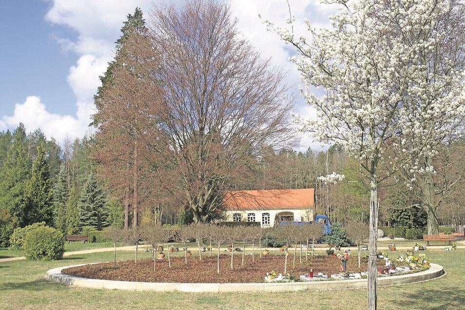 Der Friedhof in Weißkeißel ist letzte Ruhestätte und öffentlicher Park. Beim der Umgestaltung hatten die Bürger Mitspracherecht, so wie es auch in Haide sein soll.