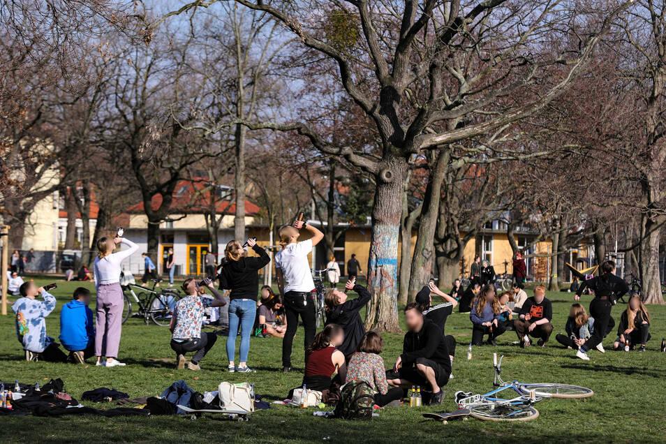 Menschen im Dresdner Alaunpark: Wann wird das normale Leben wieder erlaubt sein?