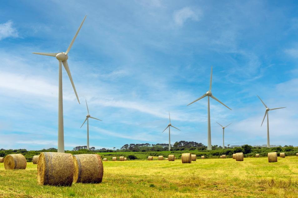 Unternehmen in den ostdeutschen Bundesländern und Berlin richten ihr Geschäft zunehmend auf Nachhaltigkeit aus. Das ergibt eine Forsa-Umfrage im Auftrag der Commerzbank.