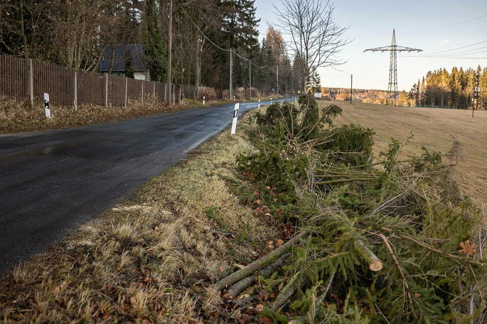Das Schadholz nach dem Sturm vom Wochenende ist beiseite geräumt. Die Straße von Altenberg nach Hirschsprung wieder frei befahrbar.