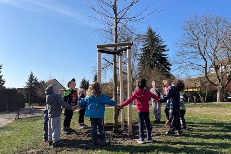 """Die Knirpse in der Strehlaer Kita """"Bummi"""" freuen sich über neu gepflanzte Bäume auf ihrem Kindergartengelände."""