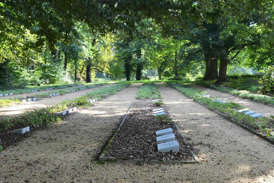 Das Grabfeld in der Mitte ist unbepflanzt, die Dickmännchen offenbar gejätet. Nur Rindenmulch liegt noch da.
