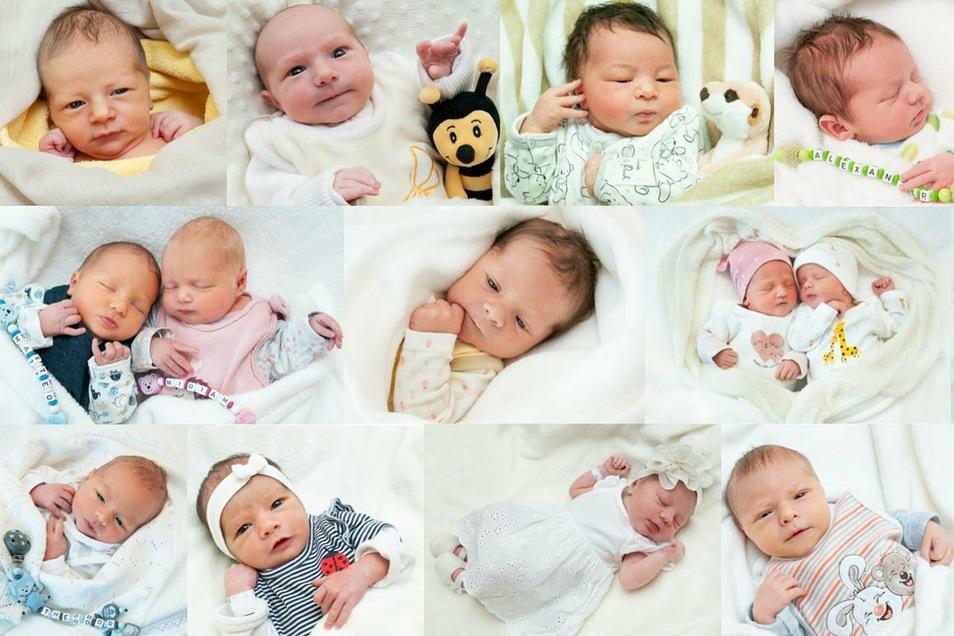 Dies waren einige der Neugeborenen am Dresdner Uniklinikum im Jahr 2020.