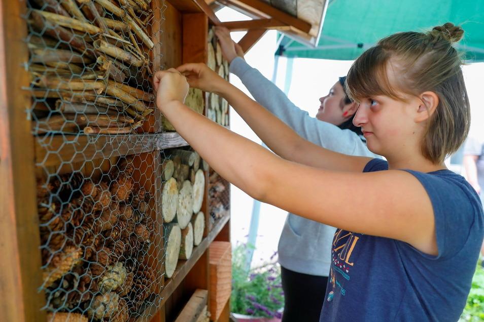Ein Insektenhotel wurde ebenfalls selbst angelegt...
