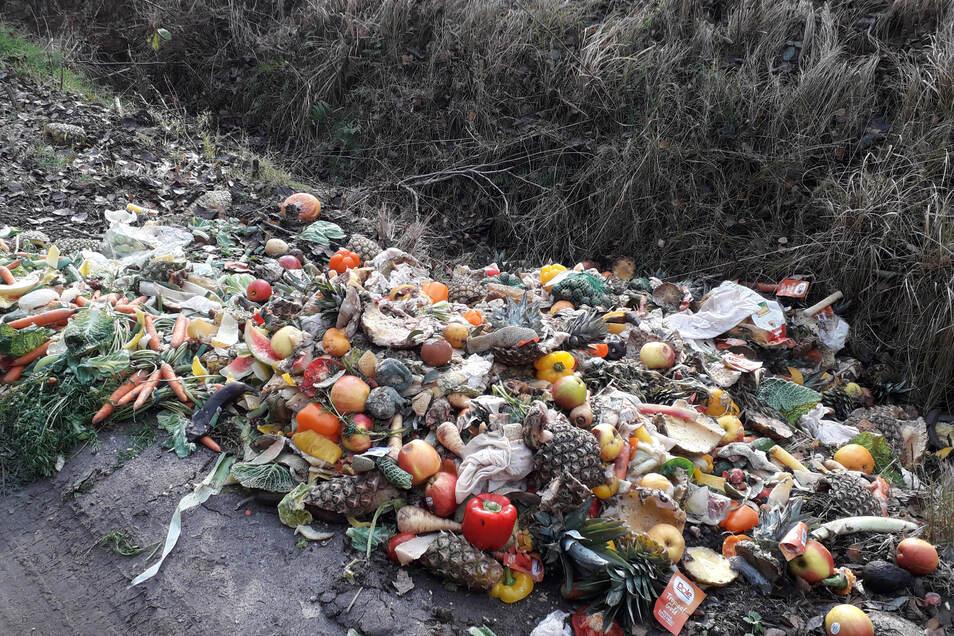 Am Radeberger Rundweg in der Dresdner Heide entdeckte Revierförsterin Uta Krause diesen Haufen mit verfaultem Obst und Gemüse. In dem Ausmaß habe sie das noch nie erlebt, sagt sie.
