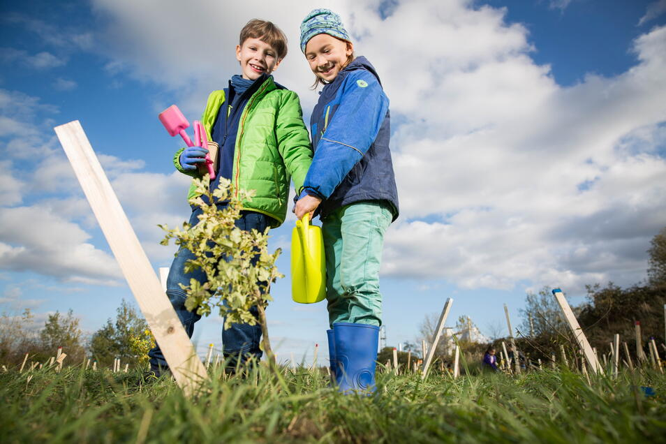 Die Schüler Oskar (8) und Emil (8) halfen bei einer Baumpflanzaktion auf dem Gelände der Stadtentwässerung.