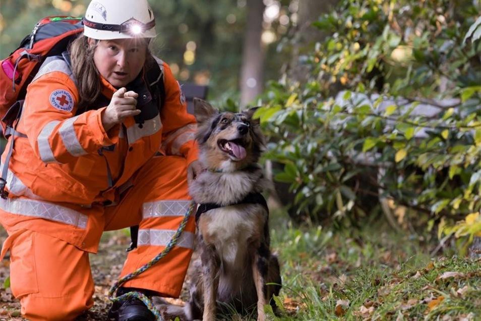 Such! Annett Skupin von der DRK-Rettungshundestaffel bringt ihre Collie-Dame Leia auf eine heiße Spur.