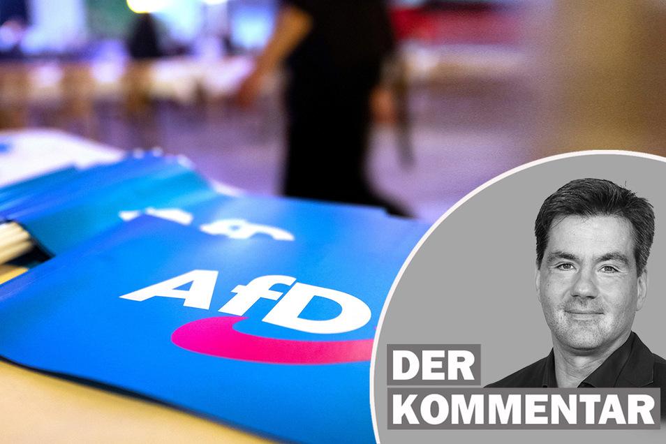 Zwei sehr unterschiedliche Teams wollen die AfD als Spitzenkandidaten in den Bundestagswahlkampf führen.