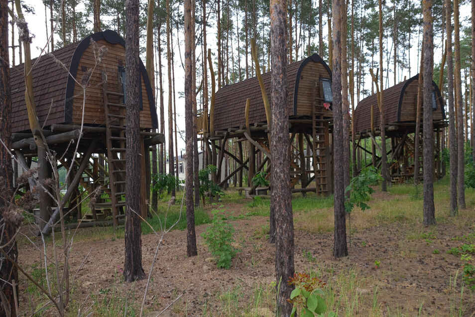 Im Hafencamp am Senftenberger See bewirtschaftet der Zweckverband Lausitzer Seenland Brandenburg auch diese Baumhäuser. Von einem solchen operativen Geschäft ist die sächsische Zweckverbands-Schwester weit entfernt.