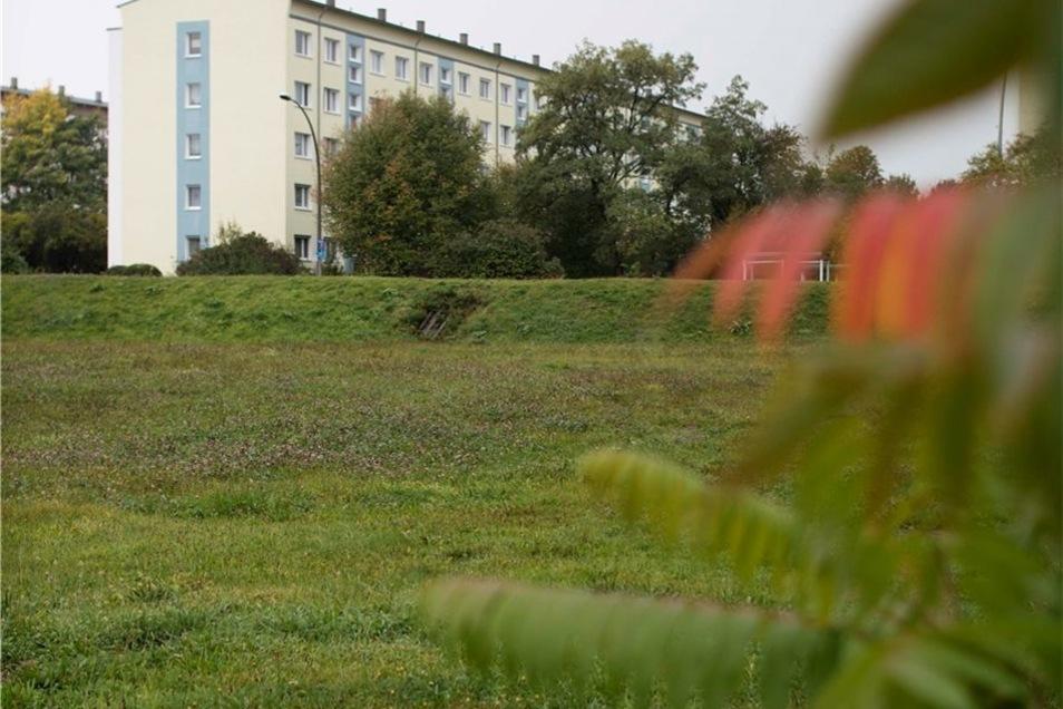 Der Eigenheimstandort: Platz für Häuslebauer soll an der Segouer Straße entstehen. In zwei Jahren könnte es so weit sein.