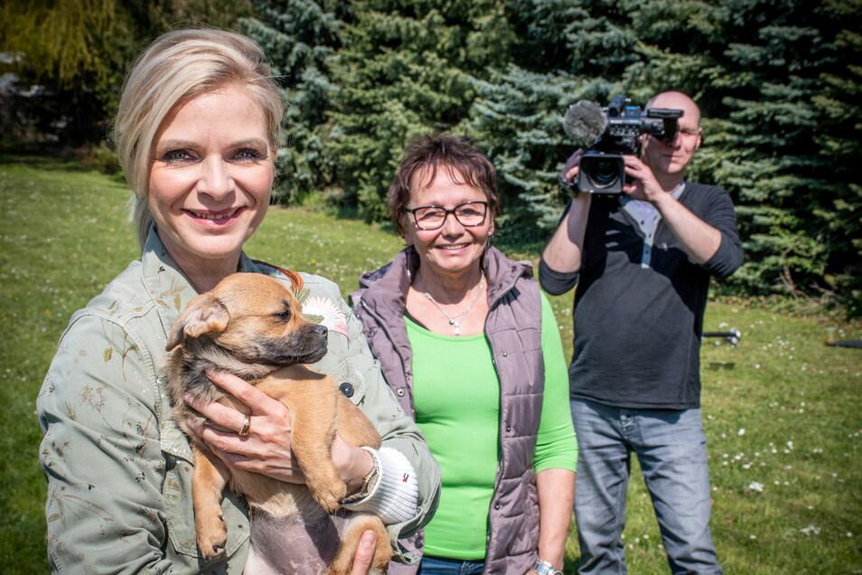"""Moderatorin Uta Bresan (links) ist mit ihrem Kamerateam der Sendung """"tierisch, tierisch"""" im Ostrauer Tierheim zu Besuch. Begrüßt wurden sie von Tierheimleiterin Marlies Przybilla."""