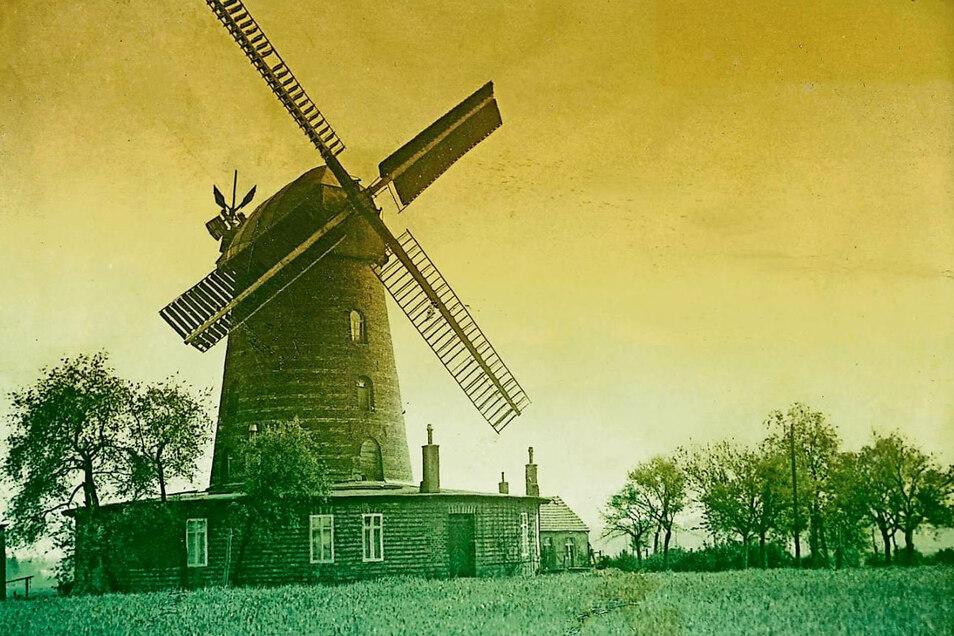 Die Holländerwindmühle bei Muskau wurde in den letzten Kriegstagen gesprengt.