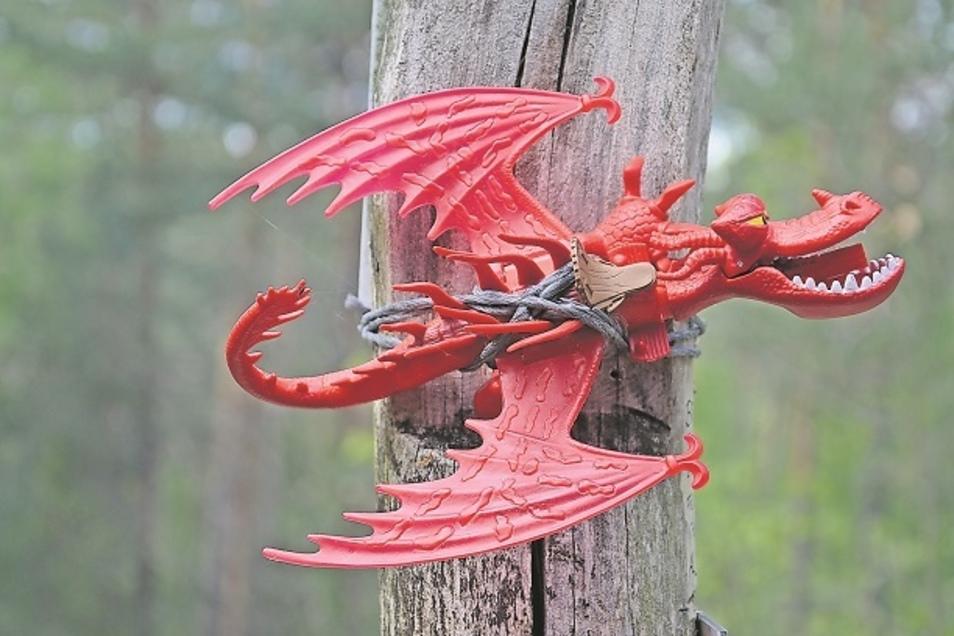 Die Mitglieder des Fördervereins Krauschwitzer Neißeland ärgert der Diebstahl eines solchen Drachens Drachens an einem Geopfad.