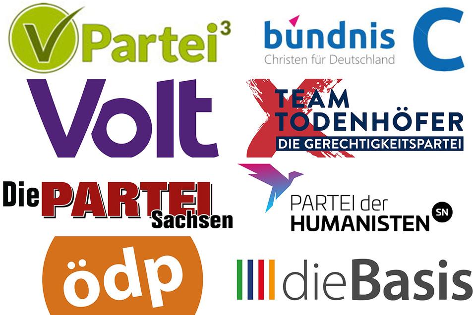 Auch die kleinen Parteien ringen in Sachsen um jede Stimme.