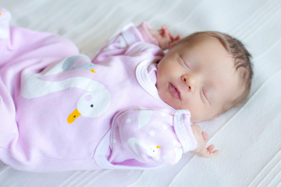 Amelie, geboren am 9. Februar, Geburtsort: Dresden, Gewicht: 2.460 Gramm, Größe: 47 Zentimeter, Eltern: Linda und Oliver Goldberg, Wohnort: Dresden