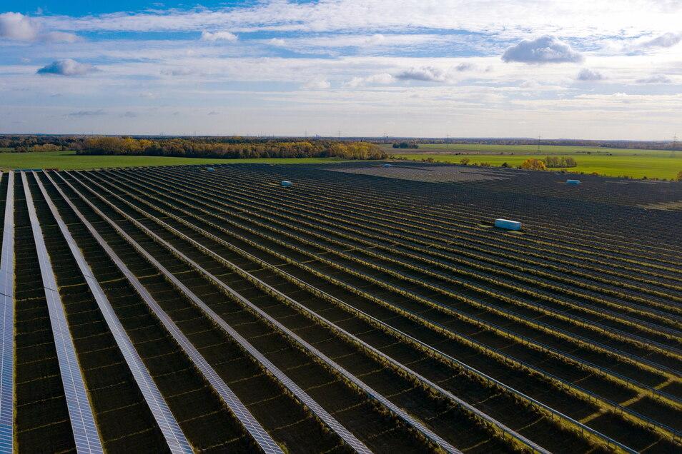 Investoren wollen bei Schleife Solarparks errichten. Dagegen regt sich Widerstand.