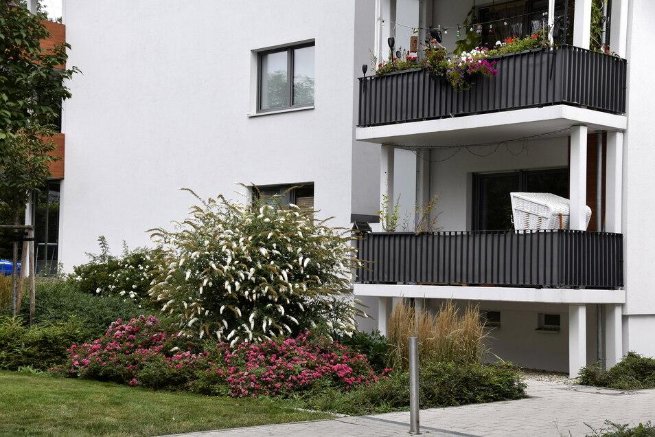 Gorbitz im Blumenfieber: Die Beete entlang der Höhenpromenade und die Vorgärten an den Wohnhäusern sind aufwendig bepflanzt.
